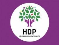 16 NİSAN HALK OYLAMASI - HDP, AYM'ye başvurdu