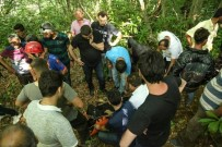 Çatalzeytin'de Arkadaşına Yardım Etmek İsterken Dereye Düşen Bir Kişi Hayatını Kaybetti