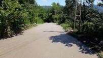 ASLANCAMI - 4 Mahallede Yol İyileştirme Çalışması