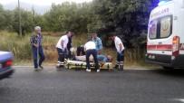 RECEP ÖZKAN - Yaralıları Kurtaran Sağlık Ekipleri Araçtaki Kedi İçin Geri Döndü