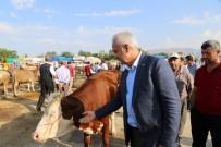 KURBAN TİMİ - Erzincan Belediyesi Kurban Bayramına Hazır