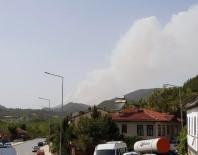 Sakarya'daki Orman Yangını Büyüyor