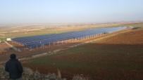 SÜKSÜN - Kayseri Şeker Güneş Enerji Santrali Yatırımlarına Devam Ediyor