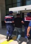 Büyükbaş Hayvan Hırsızları Tutuklandı