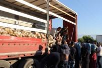 50 Kuruşa Satılan 120 Ton Patates Dakikalar İçinde Tükendi