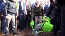 Bitkisel Orman Atıkları Enerjiye Dönüştü