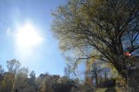Küre Dağları Sonbaharda Görenleri Büyülüyor
