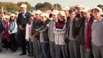 Kırklareli'nde Öğrenciler Fidan Dikti