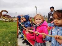 PALEONTOLOJI - Müzenin Minik Ziyaretçileri