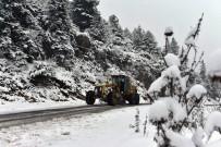 Adana'da 7 İlçede Karla Mücadele Başladı