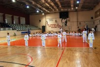 KEMAL AKTAŞ - Çanakkale'de Taekwondocular Ter Döktü