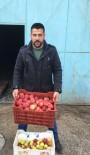 Senirkent'te Afrin'deki Mehmetçik İçin '1 Kasa Elma Kampanyası'