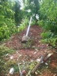 Adana'da Şiddetli Yağış Çiftçiyi Vurdu