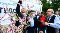 AHMET SELVI - 'İğne Oyalı Şeftali Ağacı' Guinness Rekorlar Kitabında