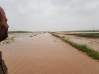 Sel Baskını Sonrası Hasar Tespit Çalışmaları Başladı