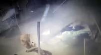 Düzce'de Yaşanan Patlama Anı Güvenlik Kamerasına Yansıdı
