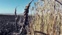 Konya'da Buğday Tarlasında Yangın