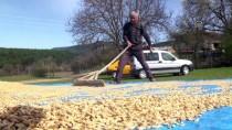Siyez Bulguruna Talep 'Erken Üretim' Yaptırdı