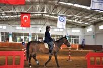 Osmanlı'nın At Yetiştirme Merkezi Mahmudiye Eski Günlerine Dönüyor