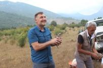 Sarıcakaya'da 200 Keklik Doğaya Salındı