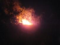 Isparta'da Korkutan Çöp Depolama Alanı Yangını