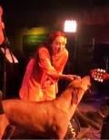 LEMAN SAM - Leman Sam Şarkı Söylerken Sokak Köpeği Sahneye Fırladı