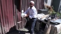 YAVRU LEYLEK - Bingöl'de Yuvasından Düşen Yavru Leylek Bakıma Alındı
