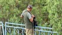 YAVRU LEYLEK - Leylekler Vadisi'nde Yavrular Büyük Göçe Hazırlanıyor