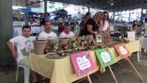 ARMAĞAN ÇAĞLAYAN - Balıkesir'de 'Sokak Hayvanları Festivali'