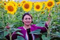 Şevkin Açıklaması 'Ayçiçeği Üretim Alanları Artmalı'