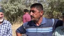 GÜNCELLEME - Nevşehir'de Yanan Araçta 2 Ceset Bulundu