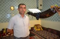 MAHMUT DEDE - Mahmut Sultan Türbesi'ne Ziyaretçi Akını