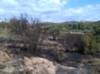 NATO - Biga'da Orman Yangını
