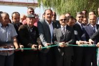 Eskişehir'de 'Yeni Dönem Pancar Alımı' Başladı