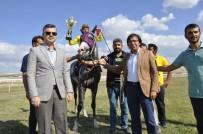 Safkan Atlar Mahmudiye'de Piste Çıktı