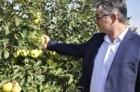 Eskişehir'e Entegre Elma Bahçeleri Kuruluyor
