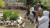 VEYSEL DİKER - Tuncel Kurtiz Mezarı Başında Anıldı