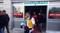 GÜNCELLEME - Köpeklerin Saldırdığı Kadın Yaralandı