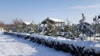 -8 Dereceyi Gören Seyfe Gölü Buz Tuttu