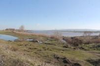 AKÇAOVA - Pompalar Yetersiz Kalınca, Tarlalar Su Altında Kaldı