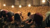 HÜSEYİN KARATAŞ - Nevşehir'de Çiftçilerin Dolandırıldığı İddiası