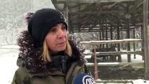İstanbul'un Yaban Hayvanları Unutulmadı