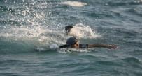 SAKIZ ADASI - Yüzerek Sakız Adası'na Kaçarken Yakalandı