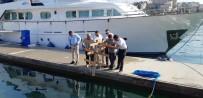 KALAMAR - Çeşme'de Mercan Yuvaları Marina İçine Yerleştirildi