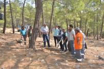 MAVIKENT - Mersin Orman Bölge Müdürlüğü, Silifke 8 Ton Reçine Üretimi Gerçekleştirdi