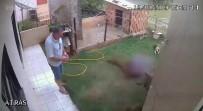 CESAR - Haşerelere Çözüm Bulmak İsterken Bahçeyi Havaya Uçurdu