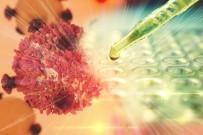 PANKREAS - Diyabet Pankreas Kanserinin Habercisi Olabilir