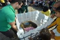 CARETTA CARETTA - Tedavi Edilen Caretta 'Astrid' Denize Bırakıldı