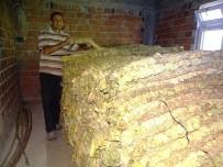HASANLAR - Hisarcıklı Tütün Üreticisinde Yüksek Fiyat Beklentisi