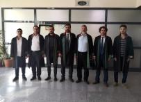 NAGEHAN ALÇI - Türk Hukuk Enstitüsü Gaziantep Şubesi'nden Nagehan Alçı'ya Suç Duyurusu